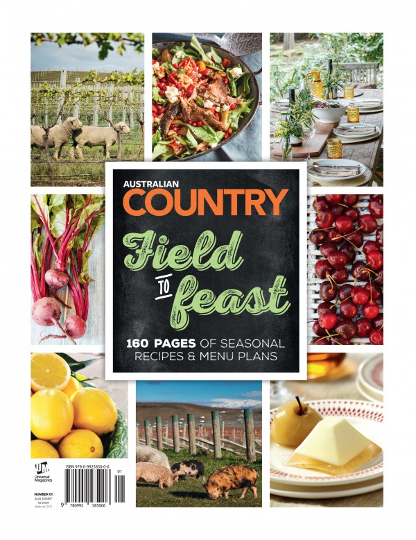 country-field-to-feast